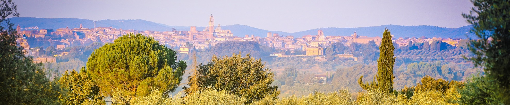 Small group bike tours from Siena