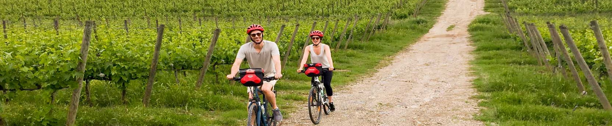 Wine e bike tours
